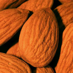 Picture of Almond PG
