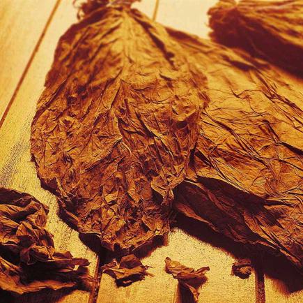 Picture of Arabic Tobacco VG