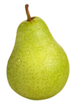 Picture of Pear VG