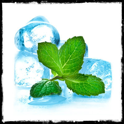 Picture of FlavorWest Menthol Flavor