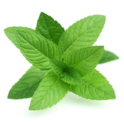 Elektromos cigi FlavourArt Borsmenta aroma 10 ml