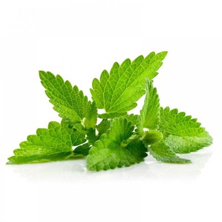 Elektromos cigi FlavourArt Fodormenta aroma 10ml