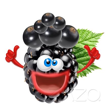 Elektromos cigi ZAZO 10ml Crazy Berries Liquid